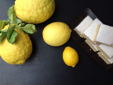The day when iced lemon cake wouldn't sell is yet to come